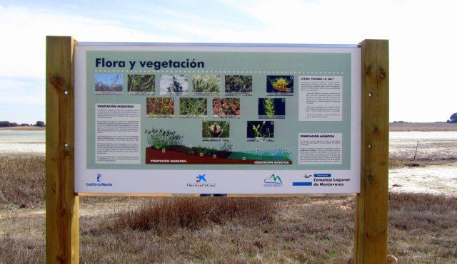 flora-y-vegetacion-manjavacas