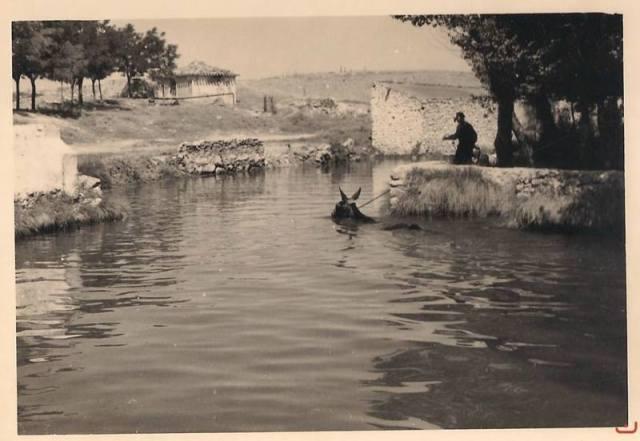 balsa de las mulas en Saona