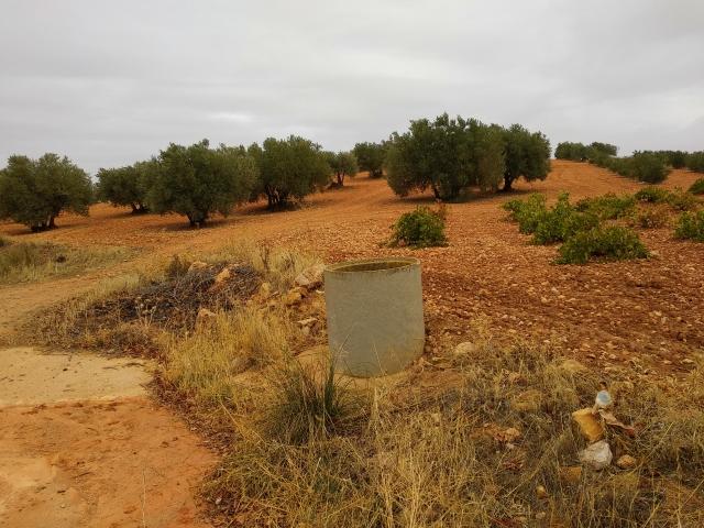 Pozo de la Cañada de María IMG_20171021_112616.jpg