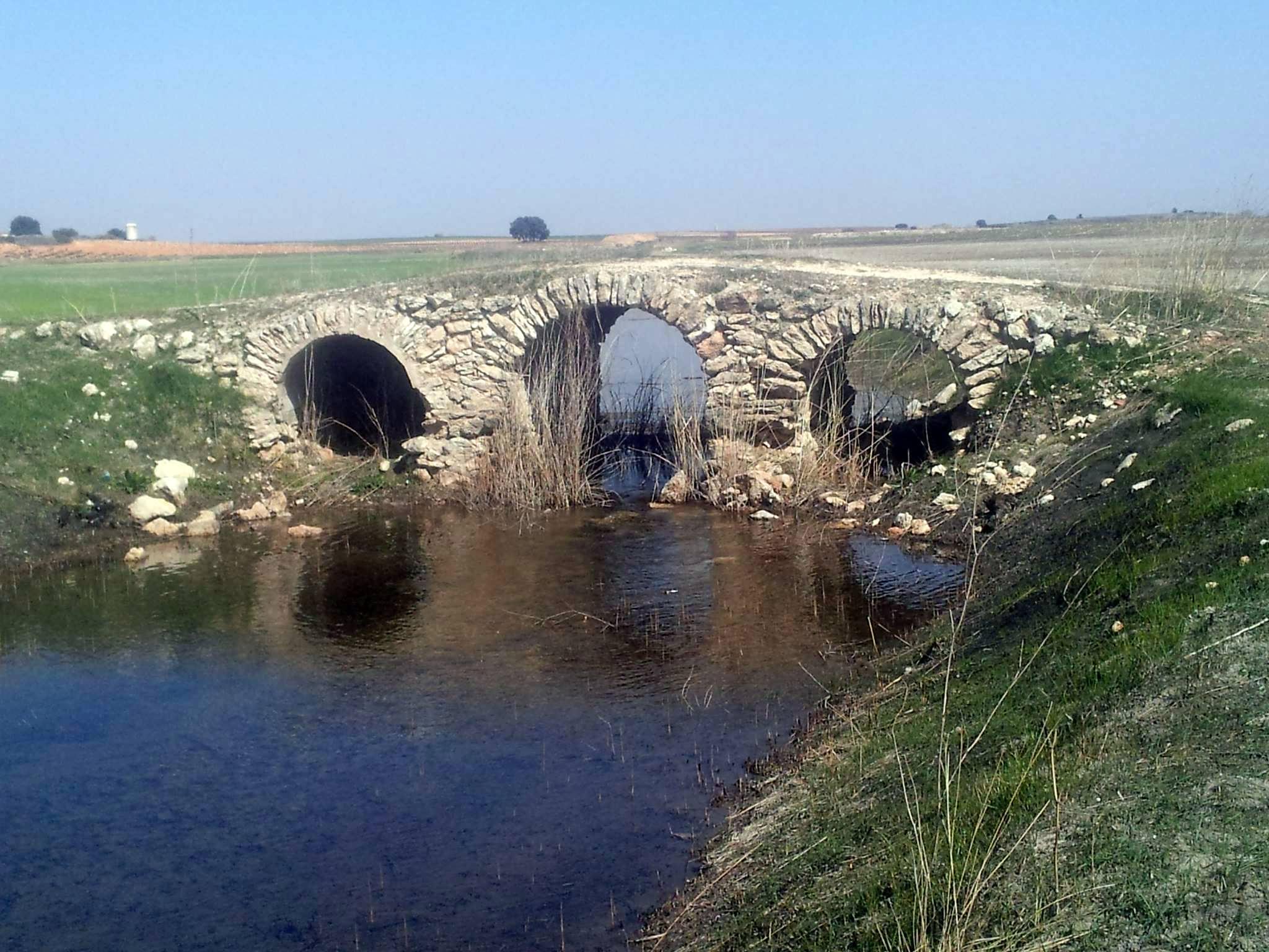 Puente Romano 1932654_10201814287947892_1231262634_o